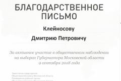 а Клейносов Д.П. Выборы
