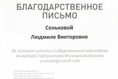 д Сенькова Л.В. Выборы