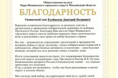 г Клейносов Д.П. Выборы4