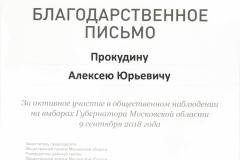 м Прокудин А.Ю. Выборы