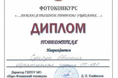 Дипломы фотоконкурс_Страница_03