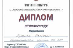 Дипломы фотоконкурс_Страница_04