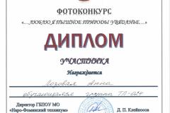 Дипломы фотоконкурс_Страница_05
