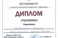 Дипломы фотоконкурс_Страница_06