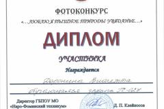Дипломы фотоконкурс_Страница_07