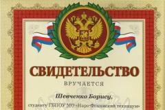 Шевченко Олимпиада сварщиков 10 место